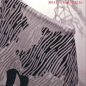 Akiko Wada Leather Exhibition