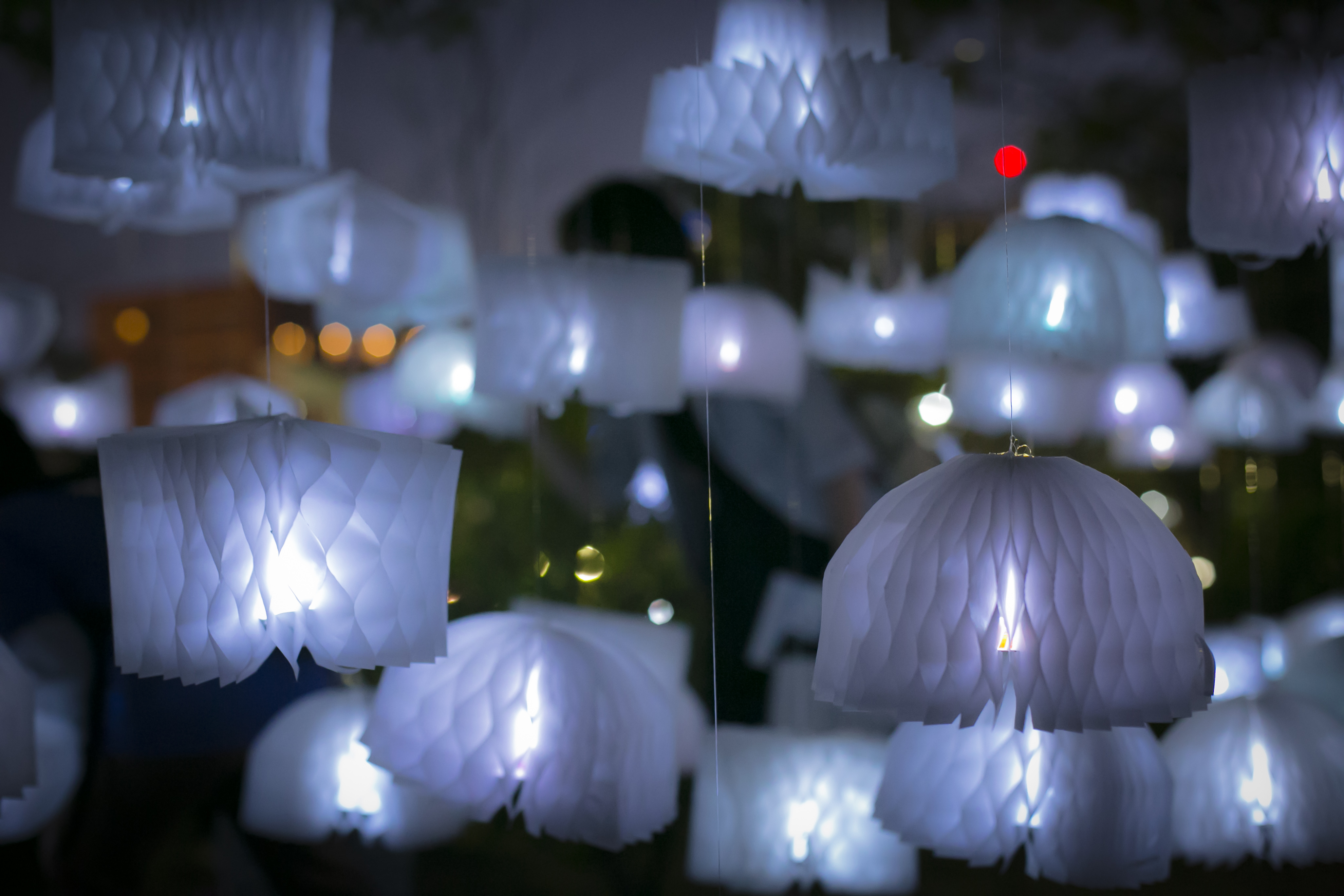 The Promenade with Music and Light Festival 2016